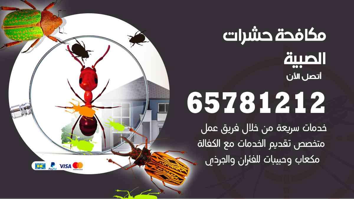 شركات مكافحة حشرات الصبية