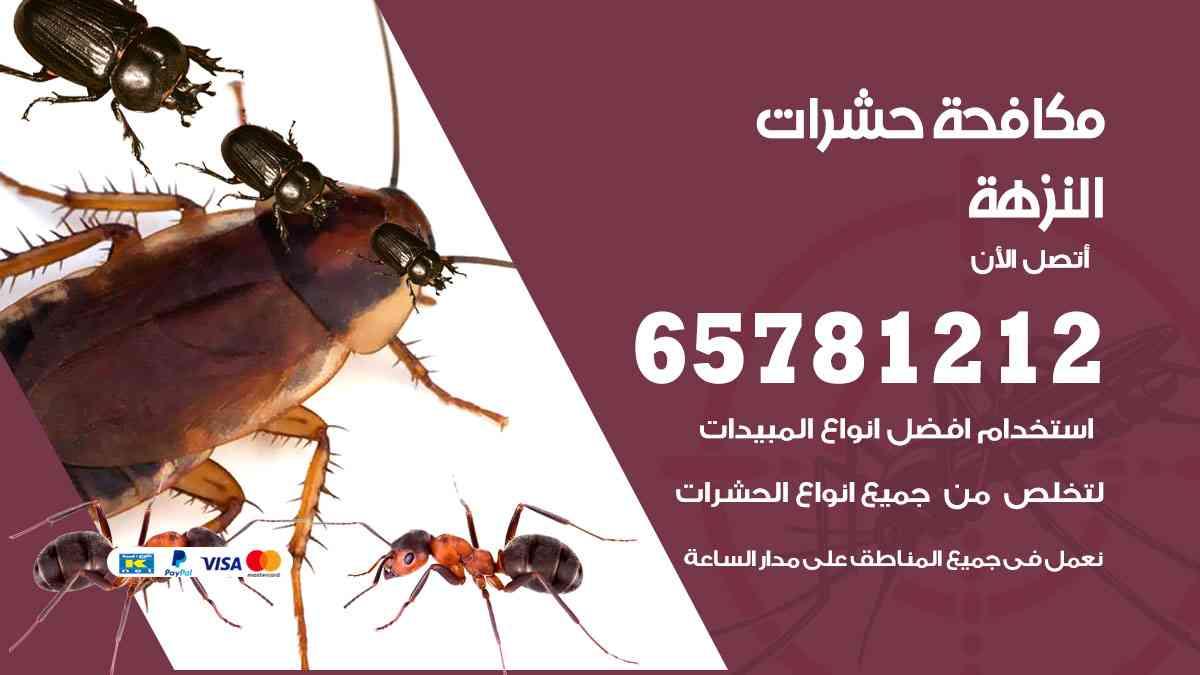 شركات مكافحة حشرات النزهة