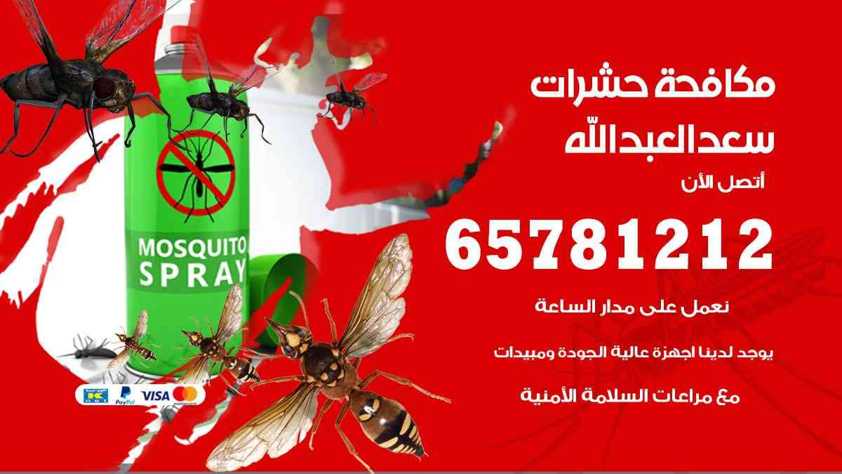 شركات مكافحة حشرات سعد العبدالله