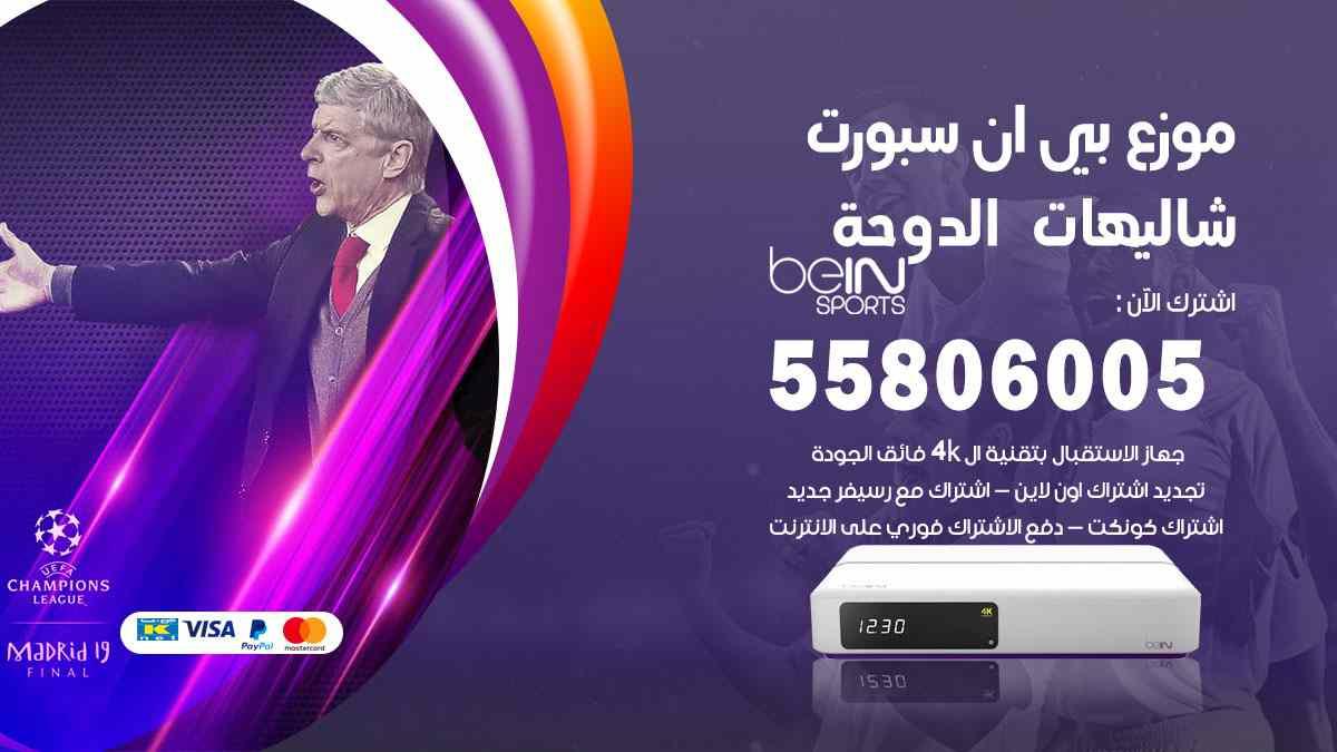 موزع بين سبورت شاليهات الدوحة