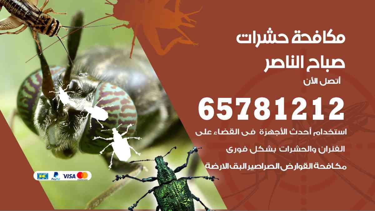 شركات مكافحة حشرات صباح الناصر