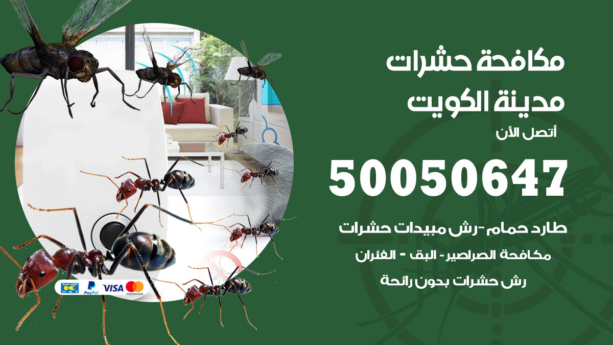 مكافحة حشرات وقوارض الكويت