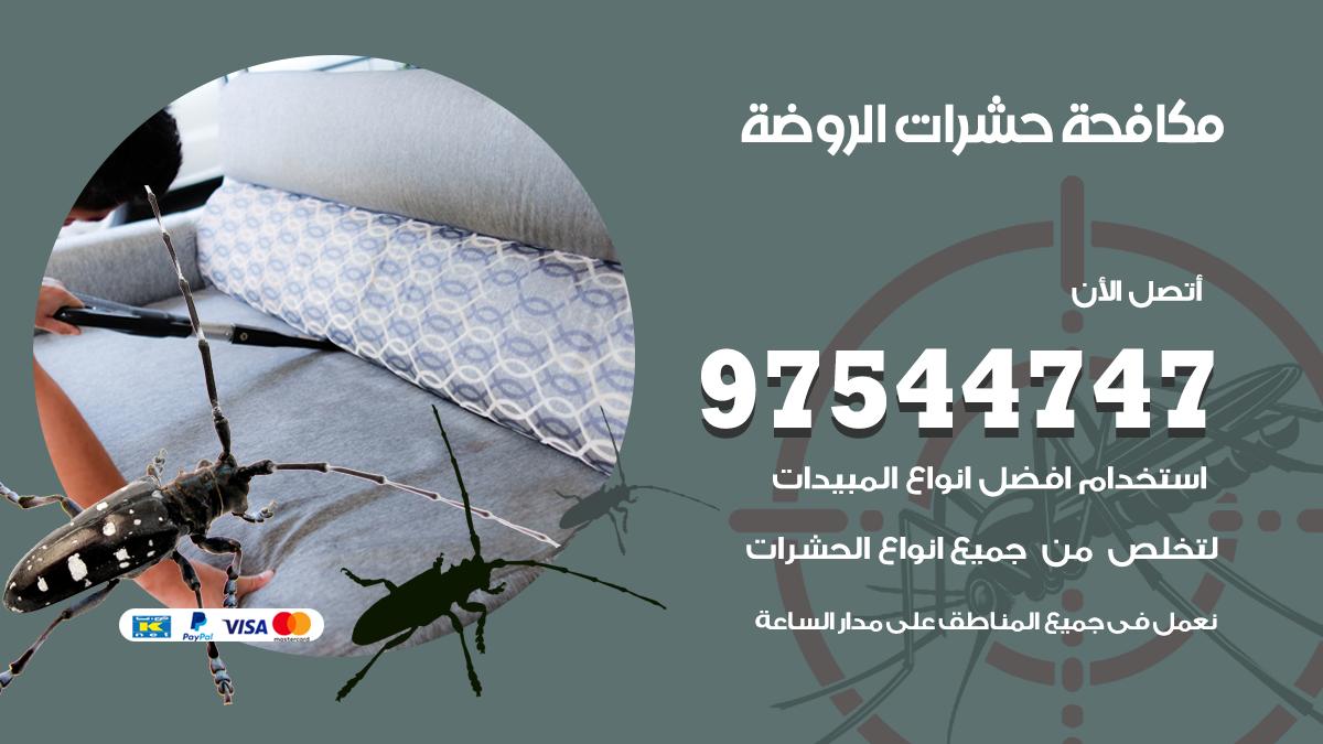 مكافحة حشرات وقوارض الروضة