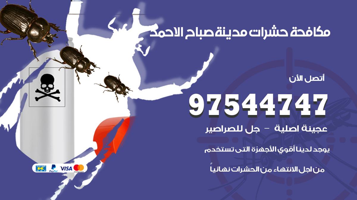 مكافحة حشرات وقوارض مدينة صباح الاحمد