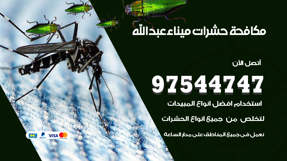 مكافحة حشرات وقوارض ميناء عبدالله