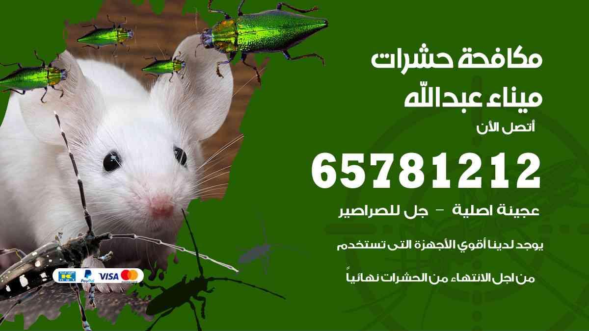 شركات مكافحة حشرات ميناء عبدالله